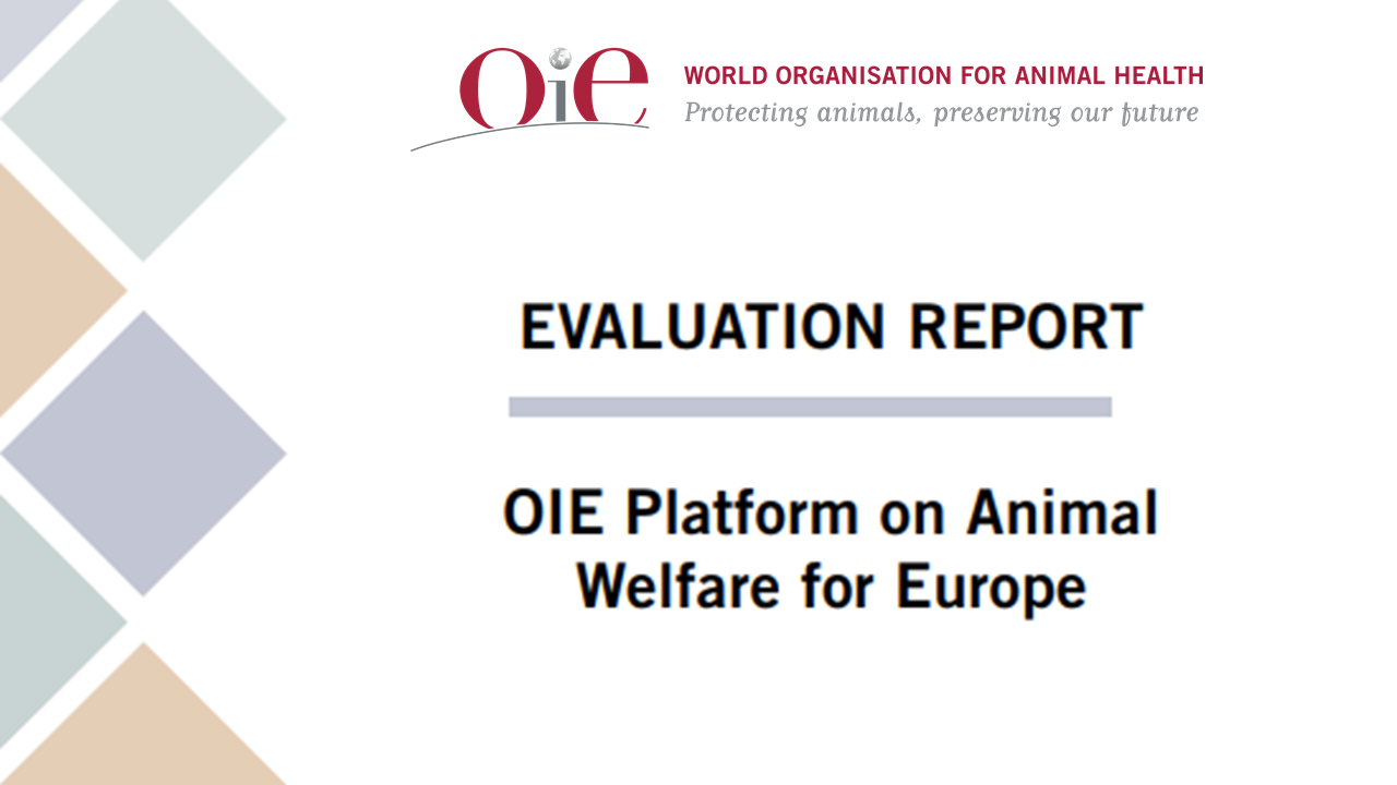 Evaluation of the OIE Platform on Animal Welfare for Europe